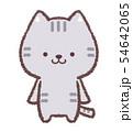 ネコ正面 54642065