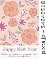 手描きの花柄年賀状 ピンク 54646518