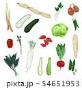 野菜 いろいろ 54651953