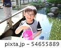 ザリガニ釣りをする子ども 54655889