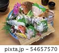 瀬戸内海の魚の刺身盛り(タチウオ、アコウ、サヨリ、メバル、コウイカ) 54657570