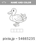 Coloring The Cute Cartoon Duck. Educational Game for Kids. Vector illustration 54665235