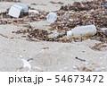 プラスチックごみ 海洋汚染 環境問題 海 砂浜 海岸 54673472