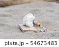 プラスチックごみ 海洋汚染 環境問題 海 砂浜 海岸 54673483