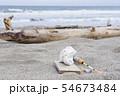 プラスチックごみ 海洋汚染 環境問題 海 砂浜 海岸 54673484