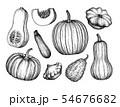 Pumpkins big set 54676682