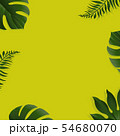 Green Background With Tropical Leaves 54680070