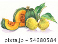 日本の年中行事イラスト:12月/かぼちゃと柚子 54680584
