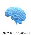 脳, 人の頭脳, ブレイン 54685601