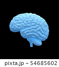 脳, 人の頭脳, ブレイン 54685602