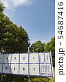 【選挙ポスター掲示板 イメージ】 54687416