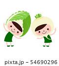野菜のイラスト。白菜とかぶのキャラクターたち。 54690296