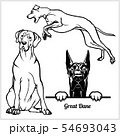 Great Dane - vector illustration for t-shirt, logo and template badges 54693043