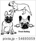 French Bulldog - vector illustration for t-shirt, logo and template badges 54693059