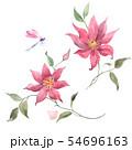 Watercolor pink tropical flowers 54696163