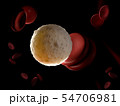 3d rendered illustration of a white blood cell 54706981