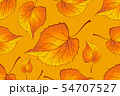 Red and Orange Autumn Leaves Yellow. Background 54707527