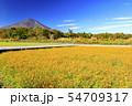 富士山(秋) 54709317