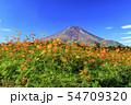富士山(秋) 54709320