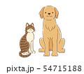 手描き風タッチの犬と猫のイラスト(ゴールデン・レトリバー&雑種キジトラ) 54715188