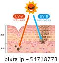 肌図 紫外線ダメージ 54718773