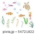 海のシリーズ 54721822