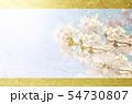 金色の和紙を背景にした桜 54730807