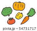 緑黄色野菜 54731717