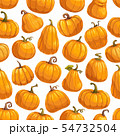 Pumpkin vegetables, gourds and squashes pattern 54732504