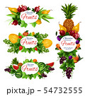 Orange fruit, strawberry berry, tropical pineapple 54732555