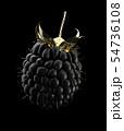 3d Illustration of Golden Raspberry 54736108