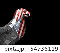 3d Rendering of American eagle with USA flags 54736119