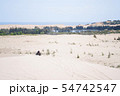 White sand dunes at Muine, Vietnam. 54742547