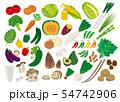 色々な野菜 54742906