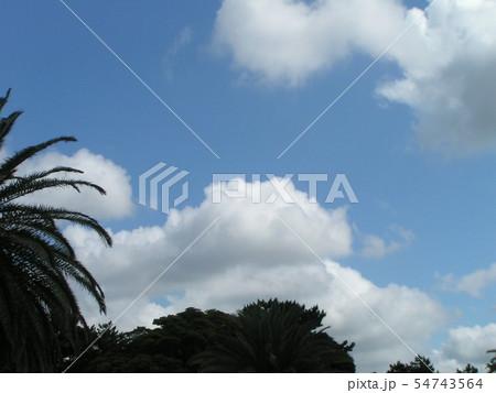 夏の青空と白い雲 54743564