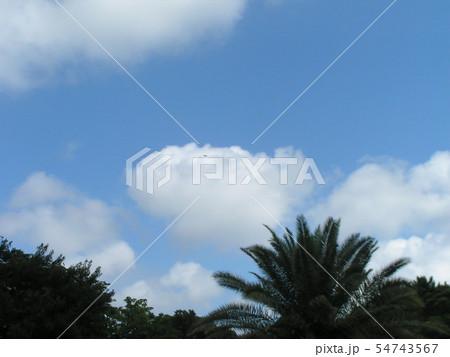 夏の青空と白い雲 54743567