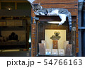 ショーケースの上の猫 54766163