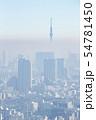 【東京】・大気汚染 54781450