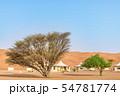 ワヒバ砂漠(オマーン、ワヒバ・サンズ) 54781774