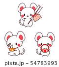 年賀状素材・子年・ネズミ年・破魔矢・達磨(だるま)・雑煮・縁起物・正月イラスト 54783993