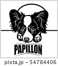 Papillon - vector illustration for t-shirt, logo and template badges 54784406