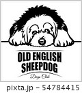 Old English Sheepdog - vector illustration for t-shirt, logo and template badges 54784415