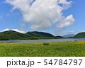 雄国沼のニッコウキスゲ群落と観察木道 54784797