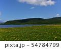 雄国沼のニッコウキスゲ群落と観察木道 54784799