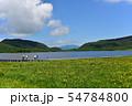 雄国沼のニッコウキスゲ群落と観察木道 54784800