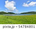 雄国沼のニッコウキスゲ群落と観察木道 54784801