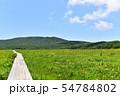 雄国沼のニッコウキスゲ群落と観察木道 54784802