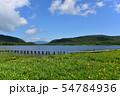 雄国沼のニッコウキスゲ群落と観察木道 54784936