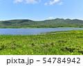 雄国沼のニッコウキスゲ群落と観察木道 54784942