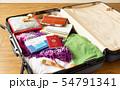 スーツケース 海外旅行保険付クレジットカード 夏 出張 パスポート 54791341